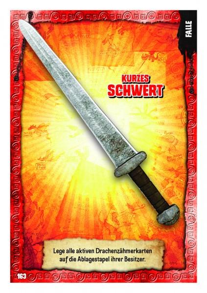 Nummer 163 I Kurzes Schwert