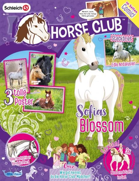 Horse Club 11/2018